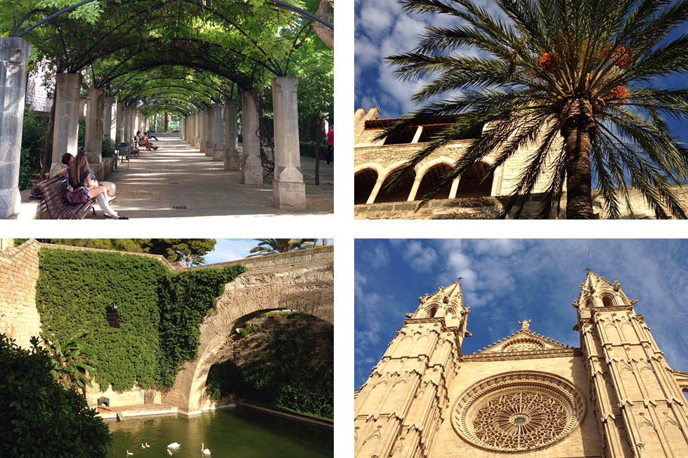 Palma Mallorca grounds