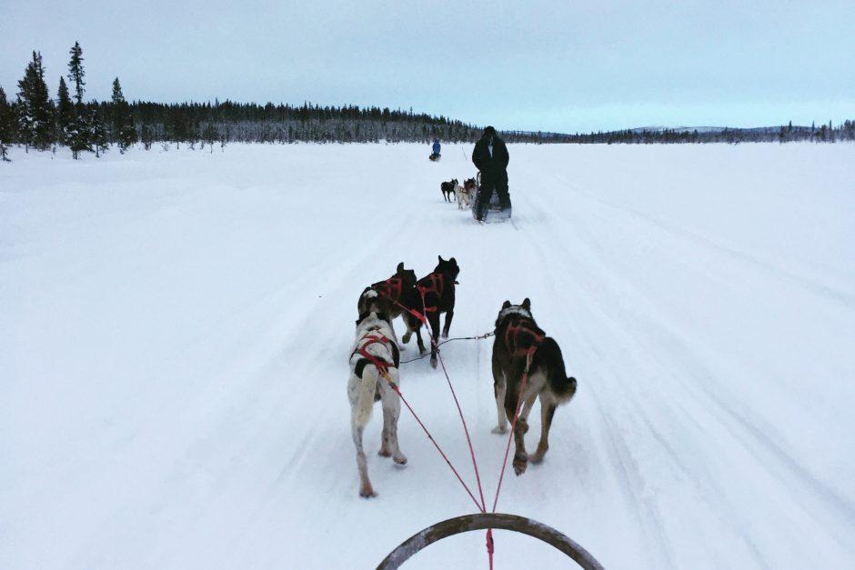 ICEHOTEL Sweden wilderness adventure
