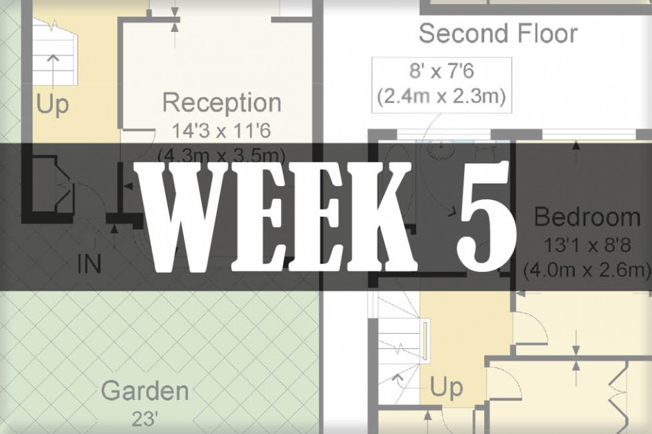 home renovations week 5
