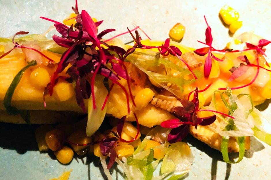 amazonico corn